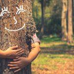 Цитаты про дерево