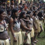 Цитаты про племя